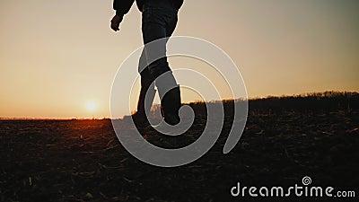 Granjero de sexo masculino en las botas de goma que camina a trav?s de campo agr?cola cultivado almacen de metraje de vídeo