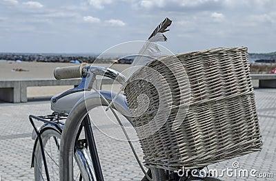 Granny bicycle