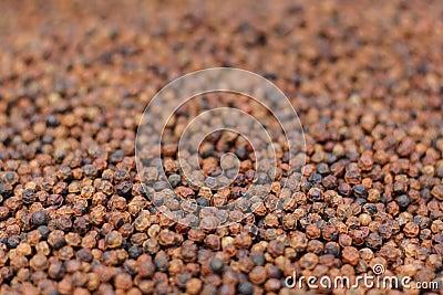 Granos de la pimienta