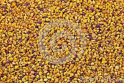 Granos del polen