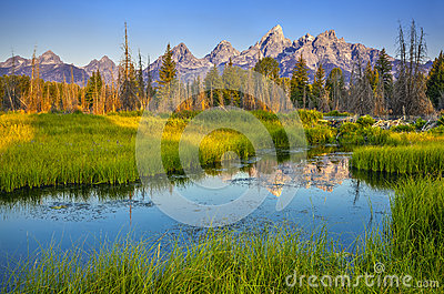 Grant teton national park