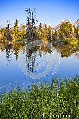 Grant teton national park