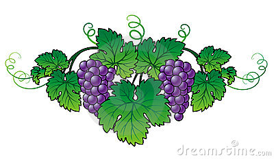 Grape Brunch