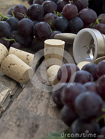 Grape with corks