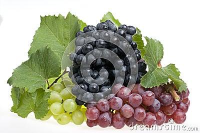 Grape food over white