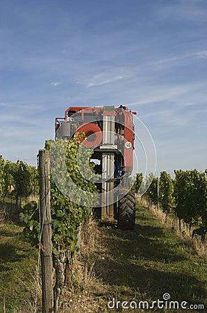 grape harvesting machine
