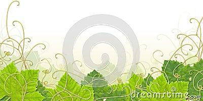 Grape leaf footer