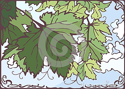 Grape leaves vector hand drawn illustration