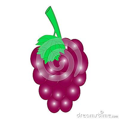 Free Grape Red  Royalty Free Stock Photos - 95588408
