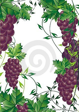 Grape vine design element for