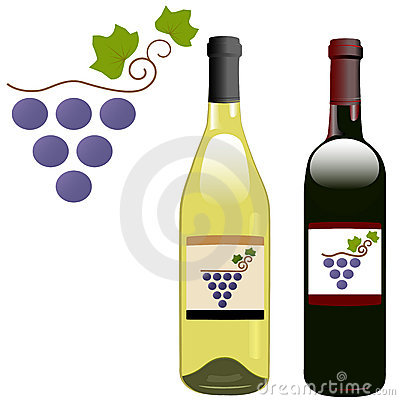 Grape vineyard red white wine bottles labels