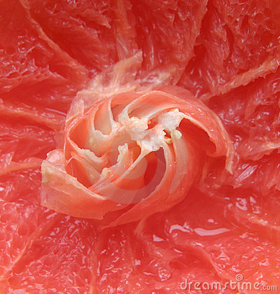 Grapefruit closeup