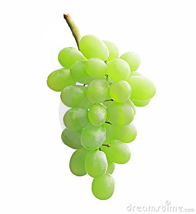 Free Grapes Stock Photo - 10113340