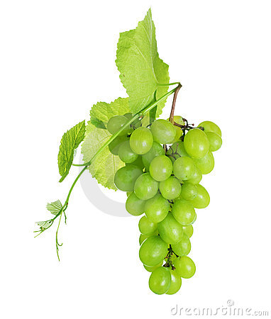 Free Grapes Royalty Free Stock Photography - 15790947