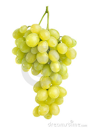 Free Grapes Royalty Free Stock Image - 16532166
