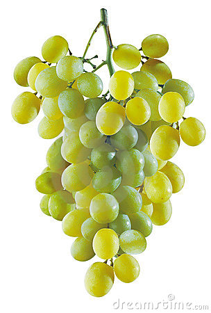 Free Grapes Royalty Free Stock Photography - 380797
