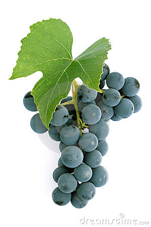 Free Grapes And Leaf Stock Images - 1228164