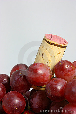 Free Grapes For Wine Stock Photos - 12902053