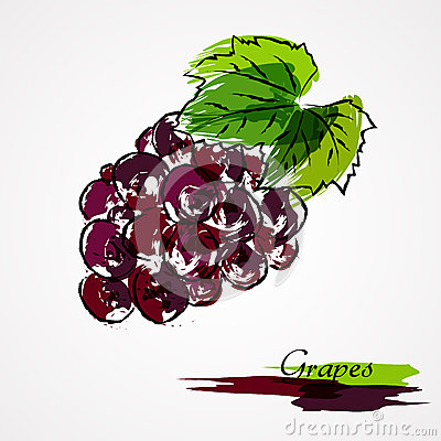 Grapes fruit