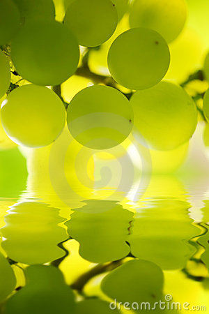 Free Grapes Over Water Royalty Free Stock Image - 7189146