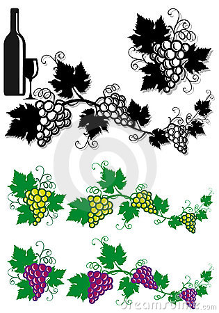 Grapes and vine leaves