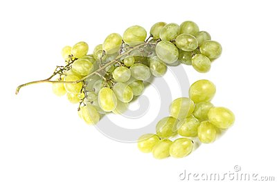 Grapes wine