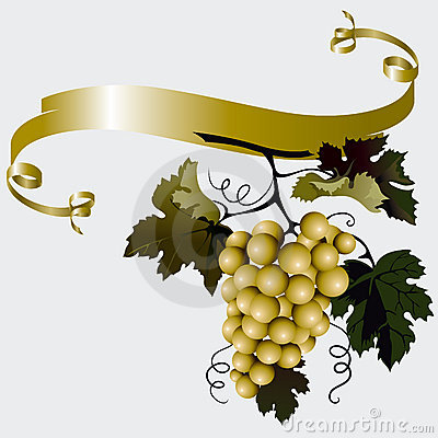 Free Grapes With Leaves Stock Image - 6768081