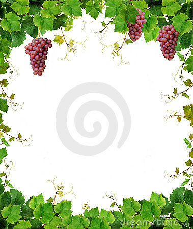 Free Grapevine Frame With Wine Grapes Royalty Free Stock Images - 10918029