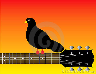 Graphic of bird on guitar neck