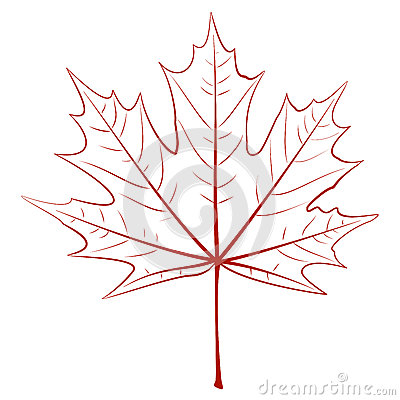 Graphic Maple Leaf
