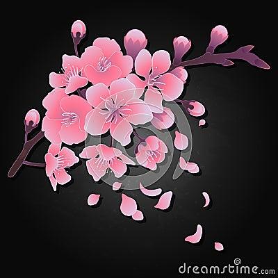 Graphic sakura flowers Vector Illustration