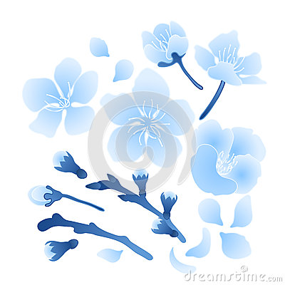 Graphic sakura set Vector Illustration