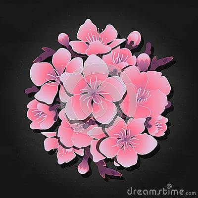 Graphic sakura vignette Vector Illustration