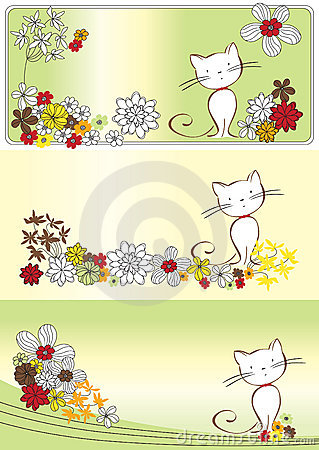Graphic set with flowers and cat