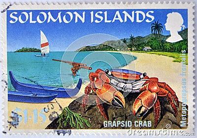 A grapsid crab on a beach paradise