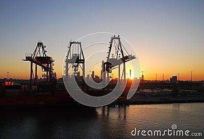 Grúas del puerto en la salida del sol