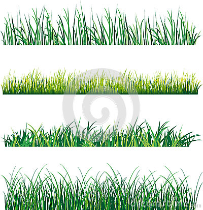 Free Grass Royalty Free Stock Images - 29920839