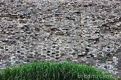 Grass and ancient wall