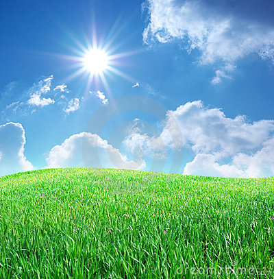 Free Grass And Deep Blue Sky Stock Image - 14049311