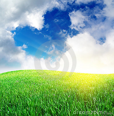 Free Grass And Heart Sign In Sky Stock Photo - 14142220