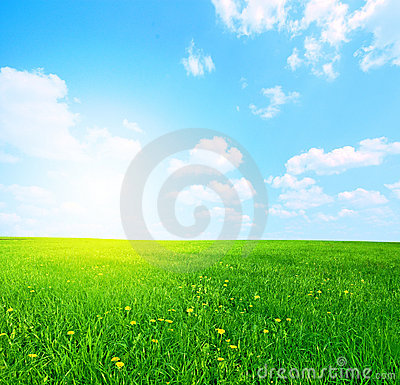 Free Grass And Sky Stock Photo - 8401430