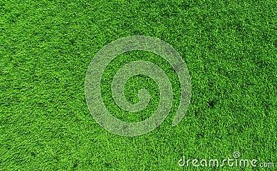 Grass backgound #1