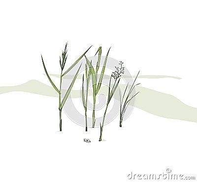 Grass blades Cartoon Illustration