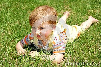 Grass boy
