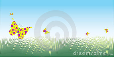 Grass & butterflies vector