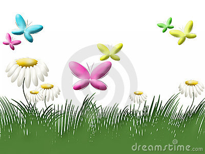 Grass, camomiles and butterflies