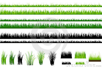Grass collection, Isolated On White. Vector