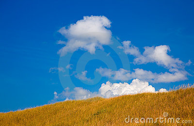 Grass covered hill with blue sky
