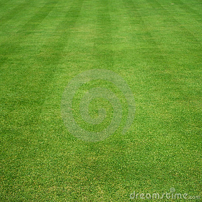 Grass cut with stripes