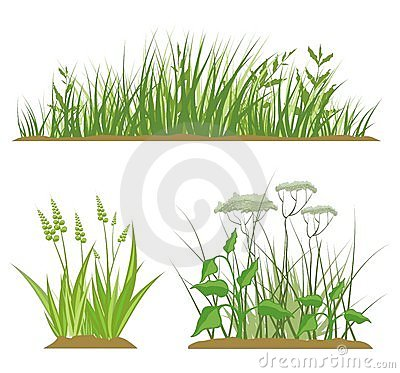 Grass Design Elements